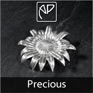 Precious Silver Objects Collection